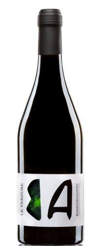 vino macerato le verzure biancoaugusto